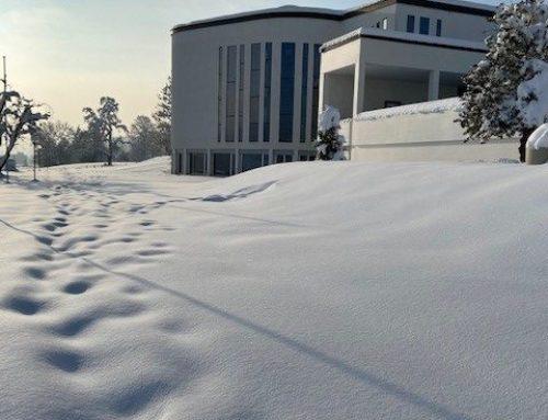 Winter im Pastoralraum