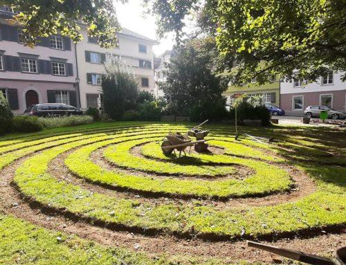 20 Helfende packen beim Labyrinth mit an!